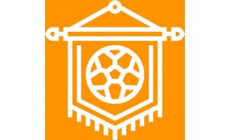 Вымпелы с логотипом